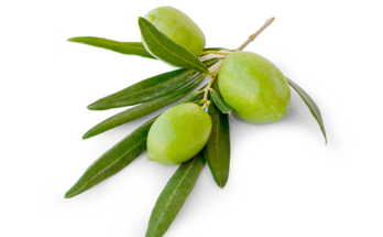 Why Extra Virgin Olive Oil Is the Healthiest Fat on Earth